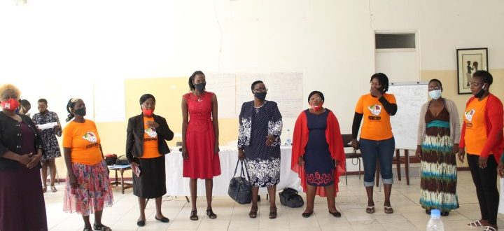 Newly elected ZCIEA National Women's Committee
